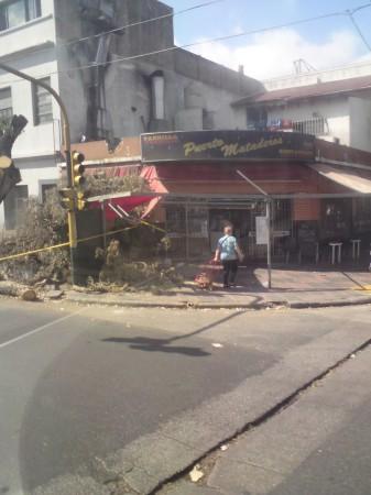Storm Damage, Mataderos